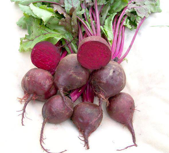 Beets, Red Baby - Pepper Pantry