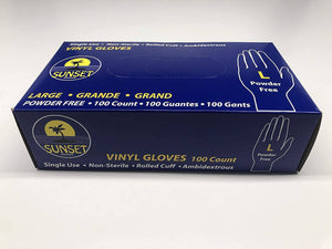 Large Vinyl Powder Free Gloves 100 CT - Pepper Pantry