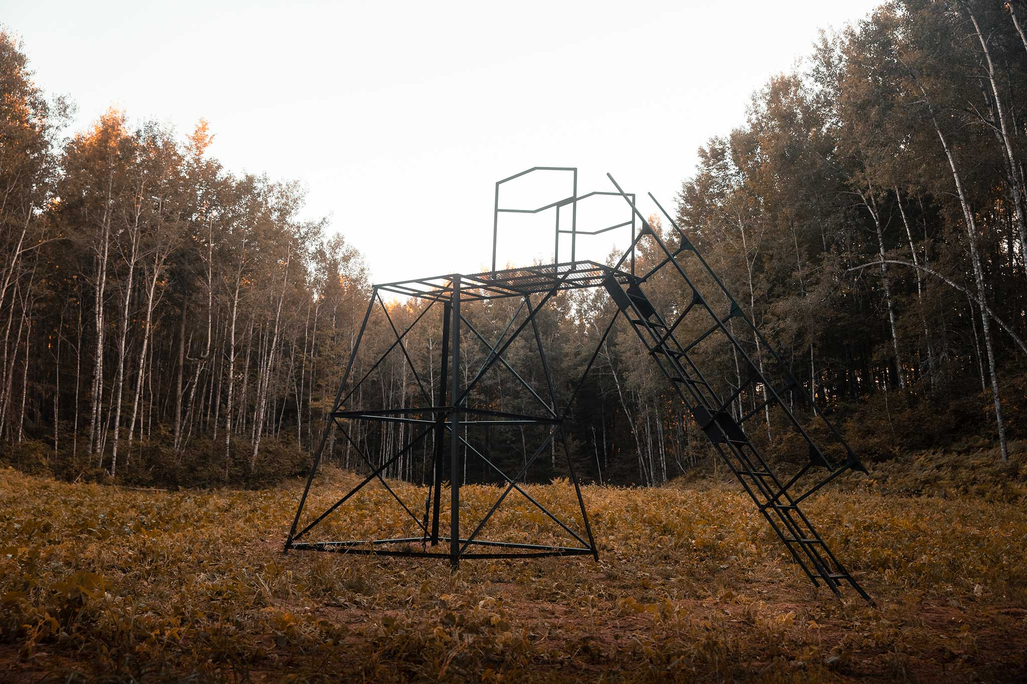 10 Foot Orion Hunting Stand + Stair