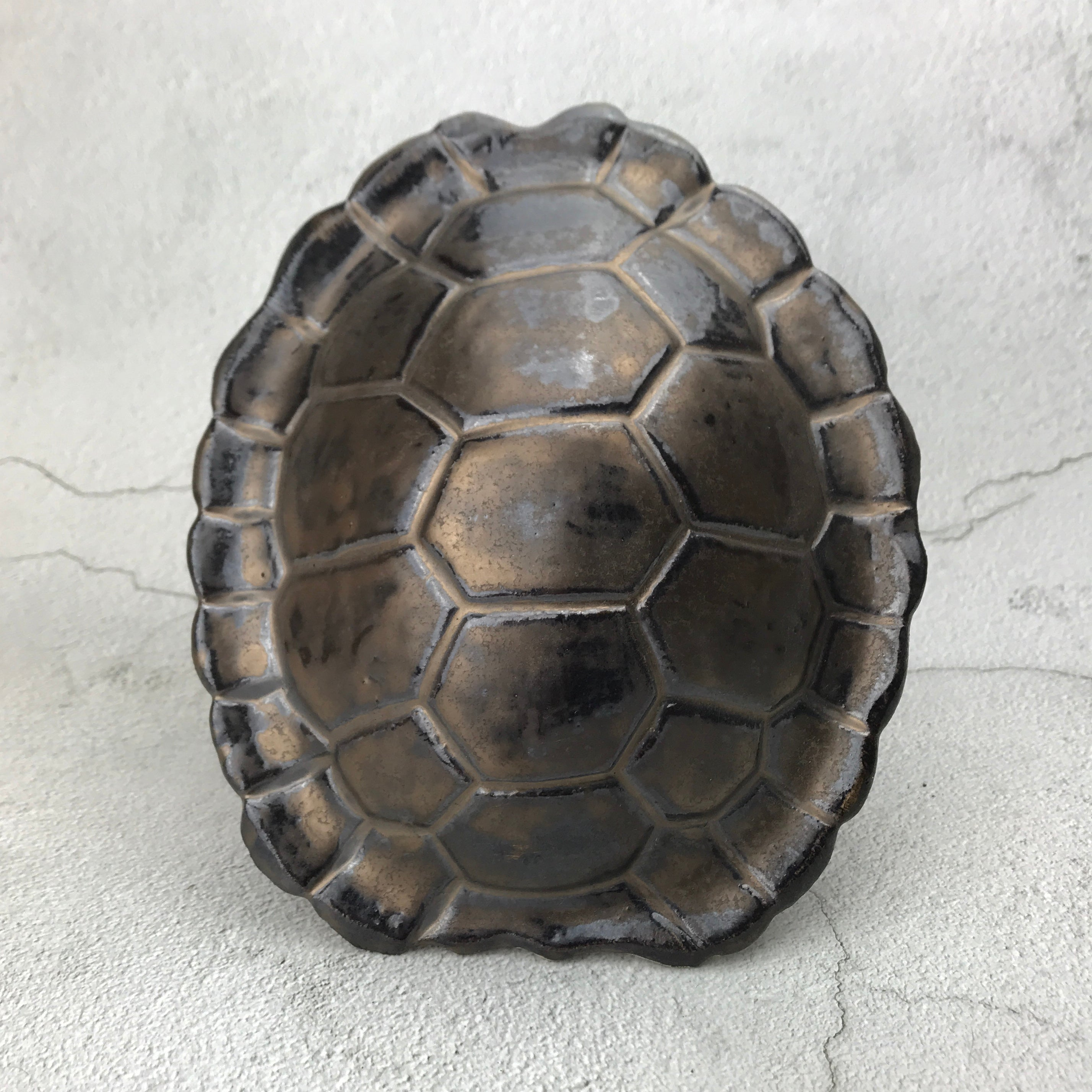 Turtle Shell Sculpture