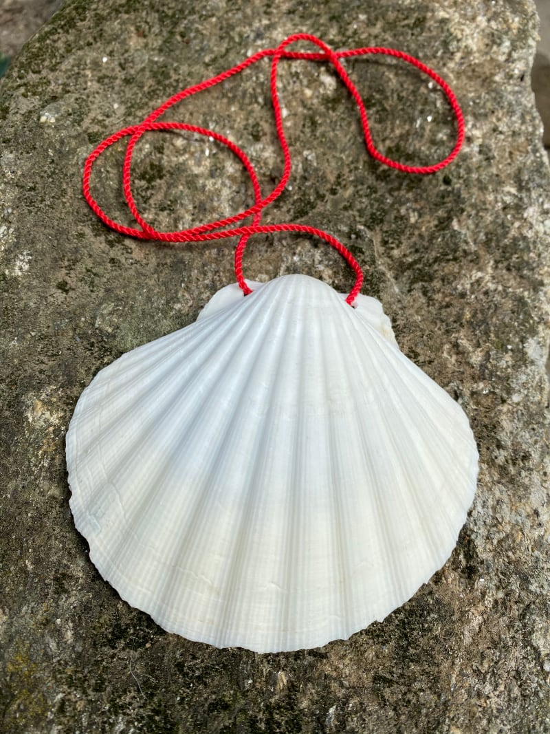 Camino Pilgrim shell (without the red cross)