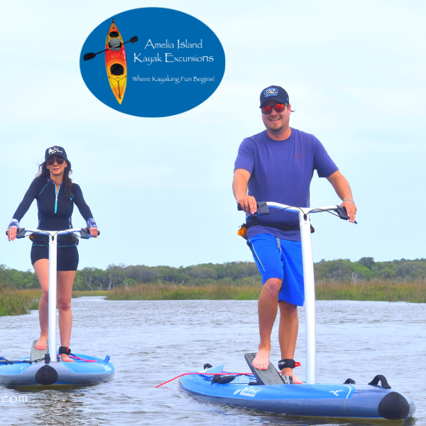 Gift Cards & Tours | Amelia Island Kayak Excursions