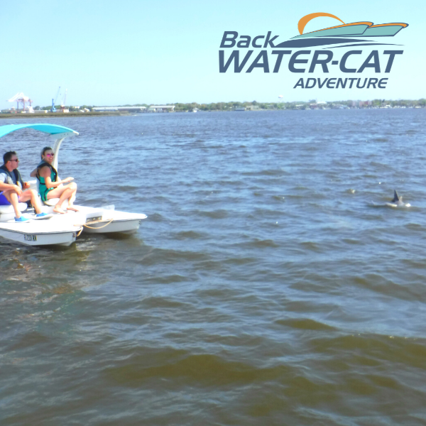 Mini-Catamaran Tour | Backwater-Cat Adventure