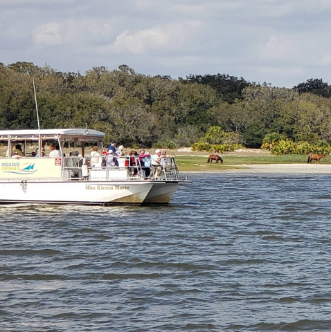 Sightseeing Boat Tours | Amelia River Cruises & Charters