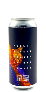 Public Access - Reason in Disguise - Drikbeer - Order Craft Beer Online