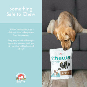 Nativo Naturals Chillin Chews Salmon Skin 6 pcs Freeze-Dried Dog Treats - Ethically Sourced, Made in USA - Grain & Gluten Free