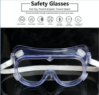 Safety Goggles (Case)