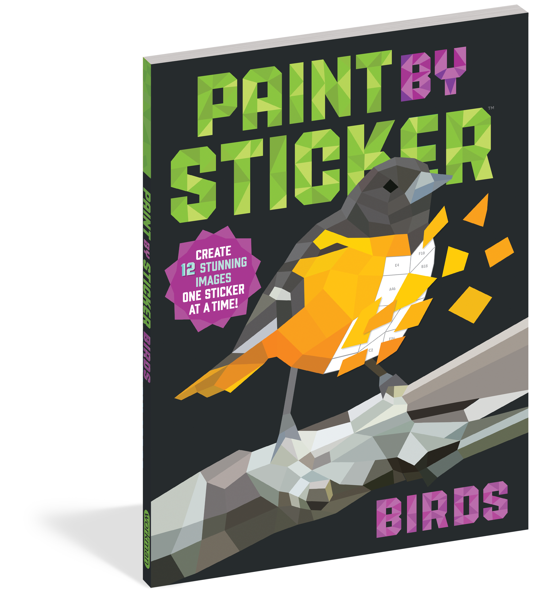 Paint by Stickers - Birds