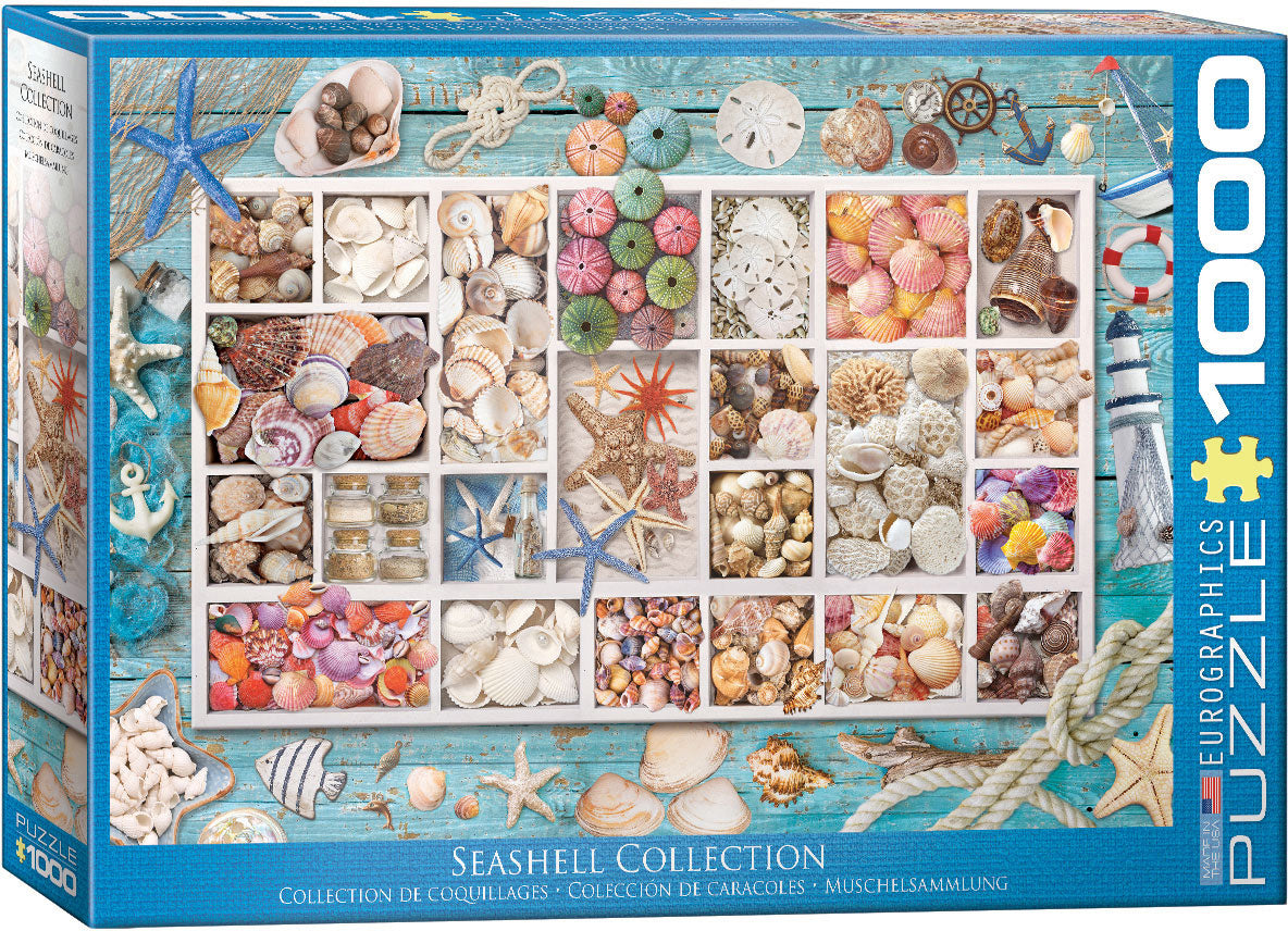 Seashell Collection 1000 piece Eurographics