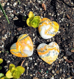 Bumble Bee Jasper Gemstone Heart ~ Assorted Sizes