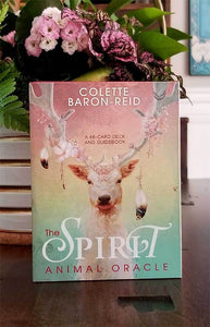 The Spirit Animal Oracle Deck ~ By Colette Baron-Reid