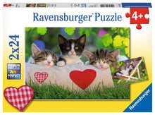 Load image into Gallery viewer, Sleepy Kittens 2x24pc Puzzle