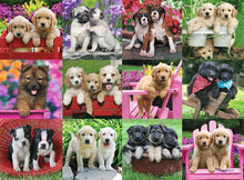 Load image into Gallery viewer, Puppy Pals 500pc Ravensburger puzzle