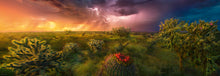 Load image into Gallery viewer, Stormy Horizon 1000pc Puzzle