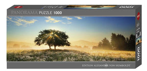 Play of Light 1000pc Puzzle