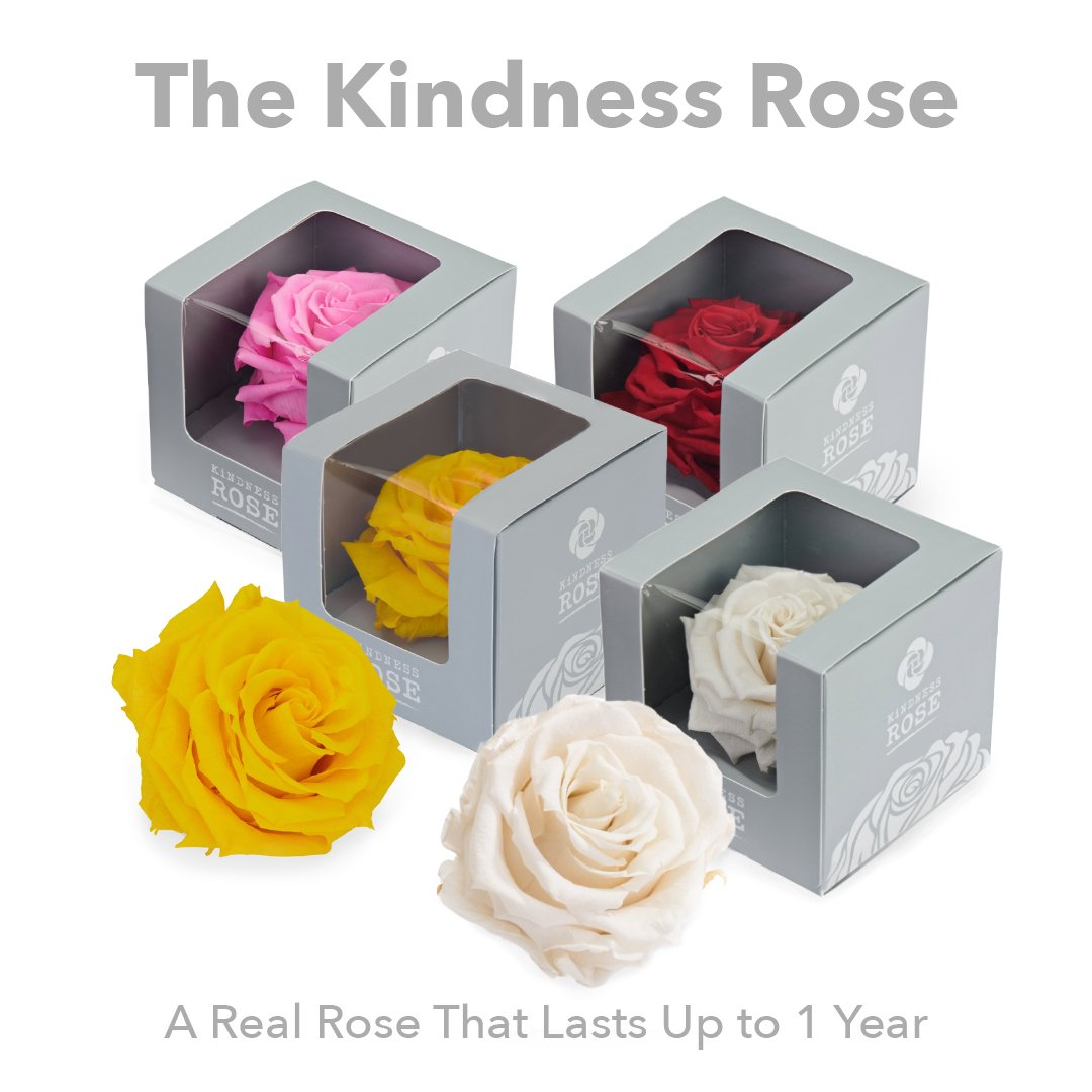 Kindness Rose - SW Inspire | Inspire Kindness | The Dash Poem