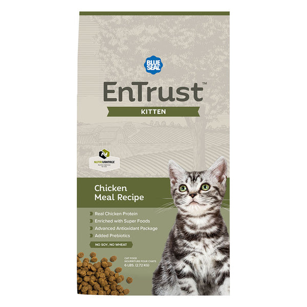 EnTrust Chaton / EnTrust kitten