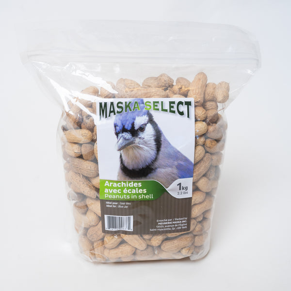 Maska Select arachide avec écales / Maska select peanuts in shell
