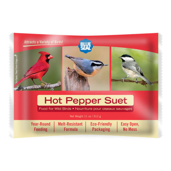 Blue Seal suif piment / Blue Seal suet hot pepper