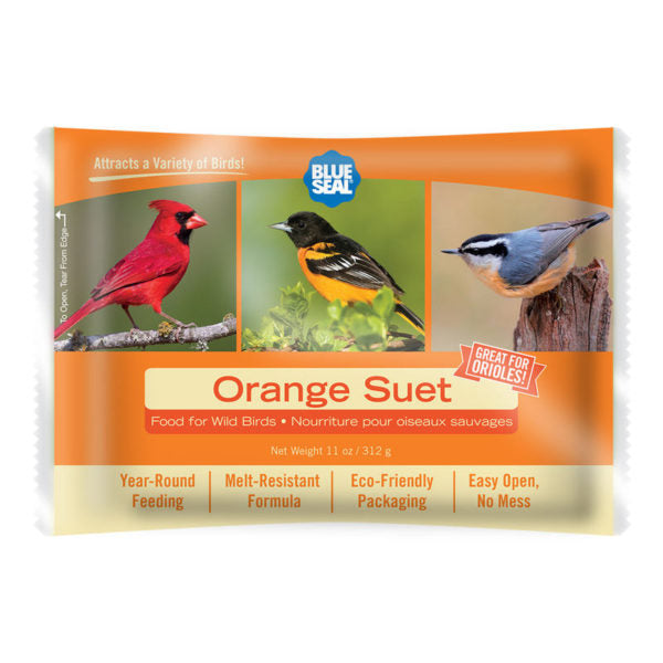 Blue Seal suif orange / Blue Seal suet orange