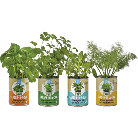 Back to the Roots Garden in a Can Set (Basil, Cilantro, Sage and Dill) - Shop Andrew Zimmern - Food  - 1