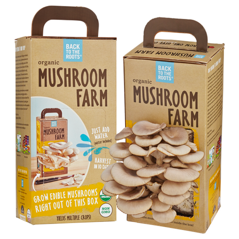 Back to the Roots Mushroom Farm - Shop Andrew Zimmern - Food  - 1