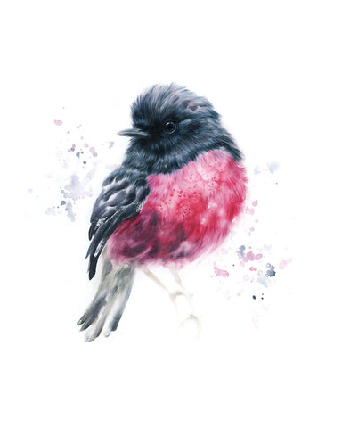 JULY/AUG 2019 Timed Edition Print - Pink Robin
