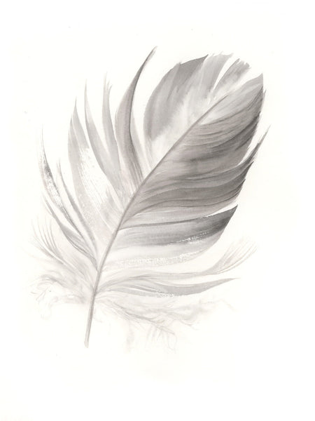 Grey Galah Feather #2 - 6 x 8""