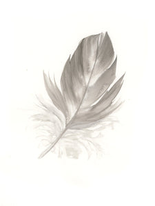 Grey Galah Feather #3 - 6 x 8""