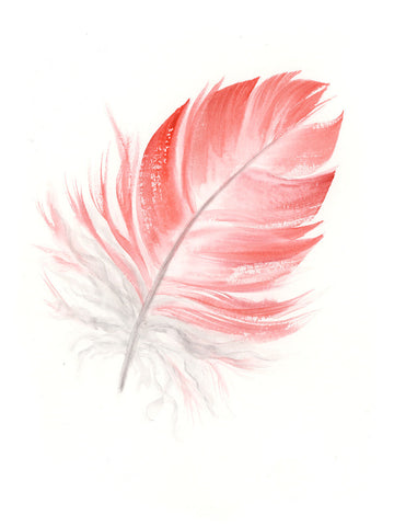 Pink Galah Feather #1 - 6 x 8""