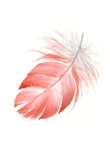Pink Galah Feather #2 - 6 x 8""