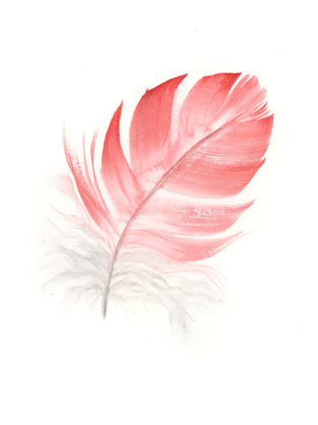 Pink Galah Feather #3 - 6 x 8""