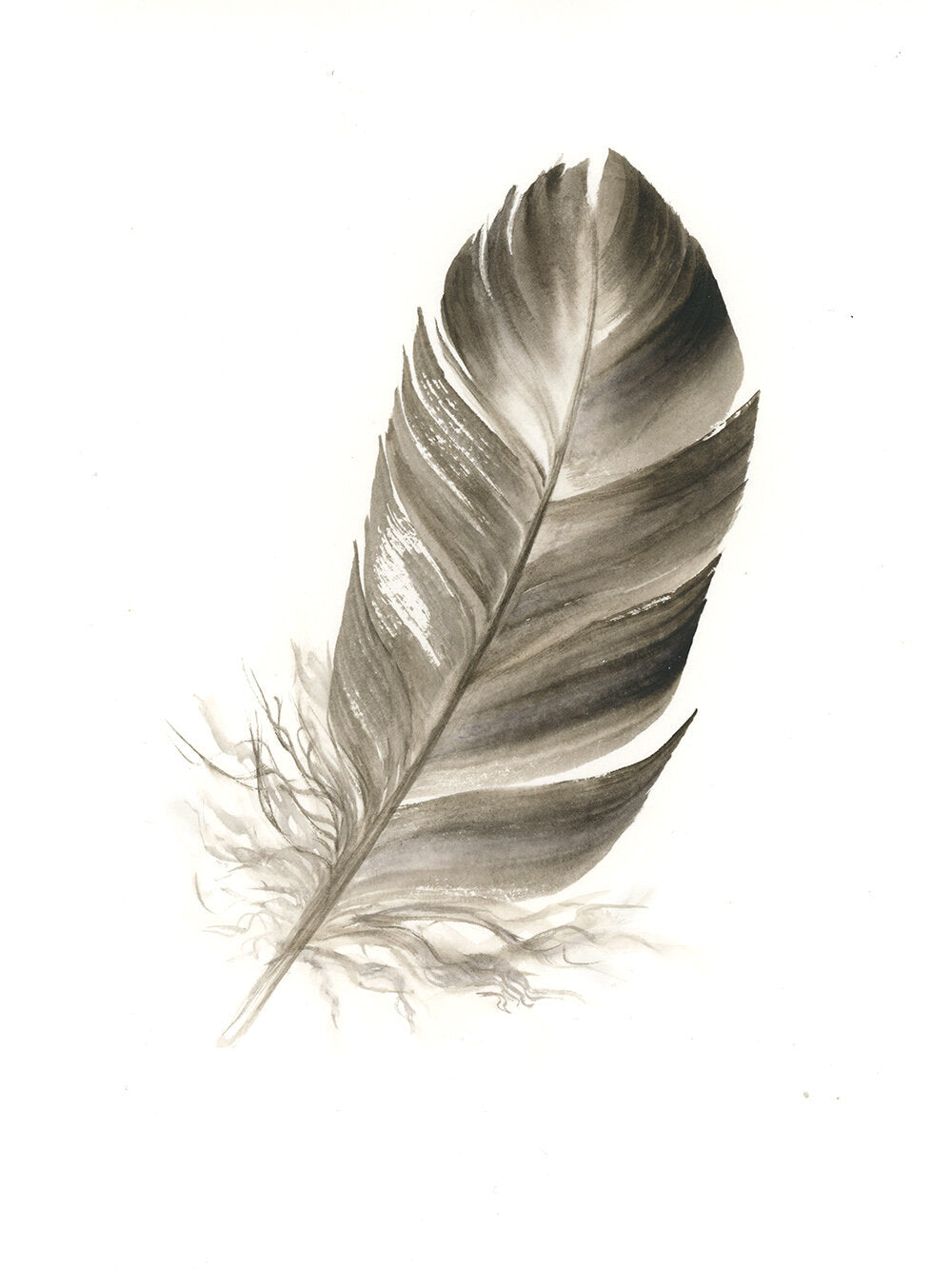 Duck Feather #1 - 6 x 8""