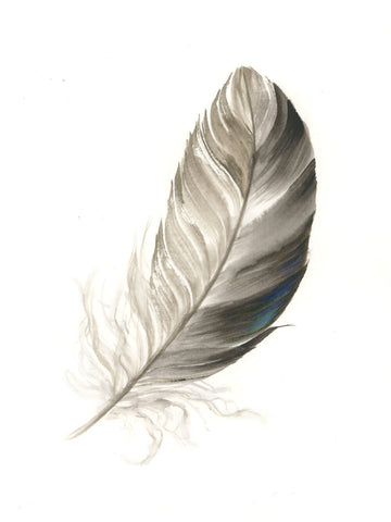Duck Feather #3