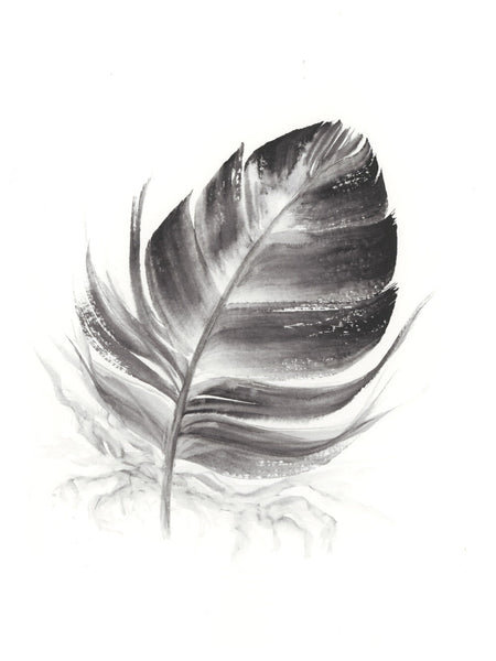 Dark Grey Feather #1 - 6 x 8""