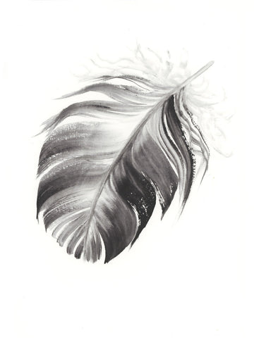 Dark Grey Feather #2 - 6 x 8""