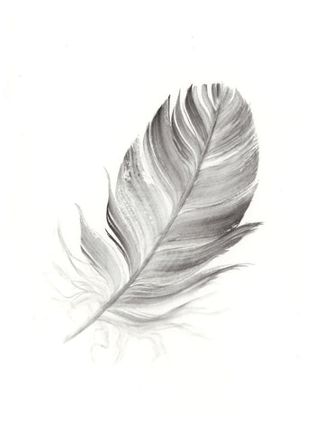Dark Grey Feather #3 - 6 x 8""