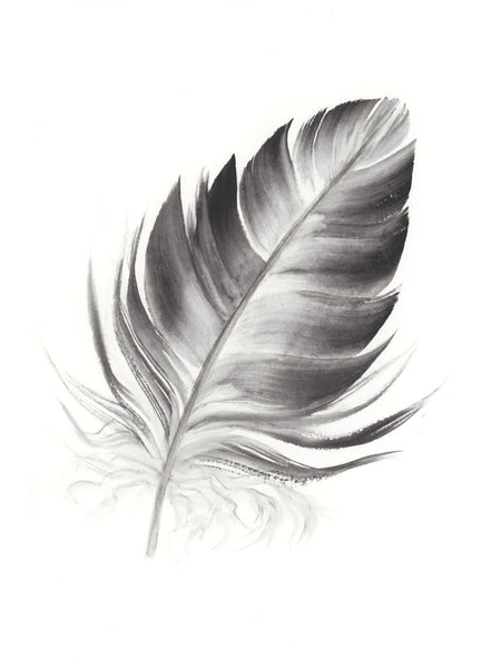 Dark Grey Feather #4 - 6 x 8""