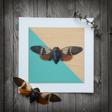 Teal-Masked: Cicada - Limited Edition Print
