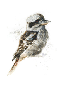 Kookaburra #1 - Limited Edition Print