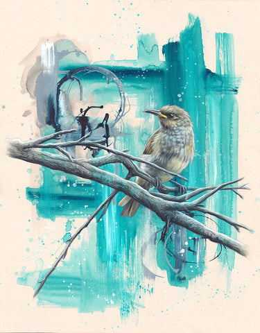 Brown Honeyeater - Limited Edition Print