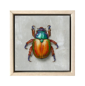 Christmas Beetle #9