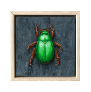 Christmas Beetle #10