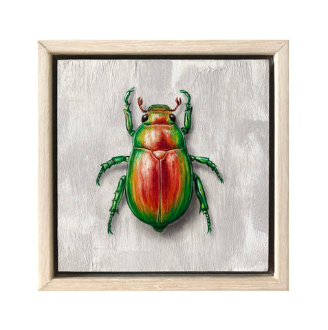 Christmas Beetle #2