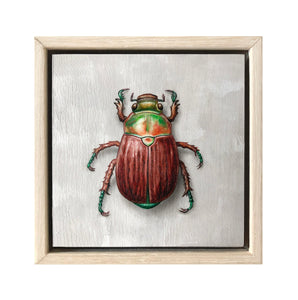 Christmas Beetle #4
