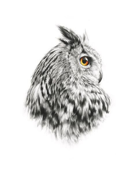 Eagle Owl - Limited Edition