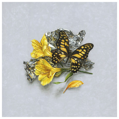 """Butterfly Mirrored with Alstroemeria"""