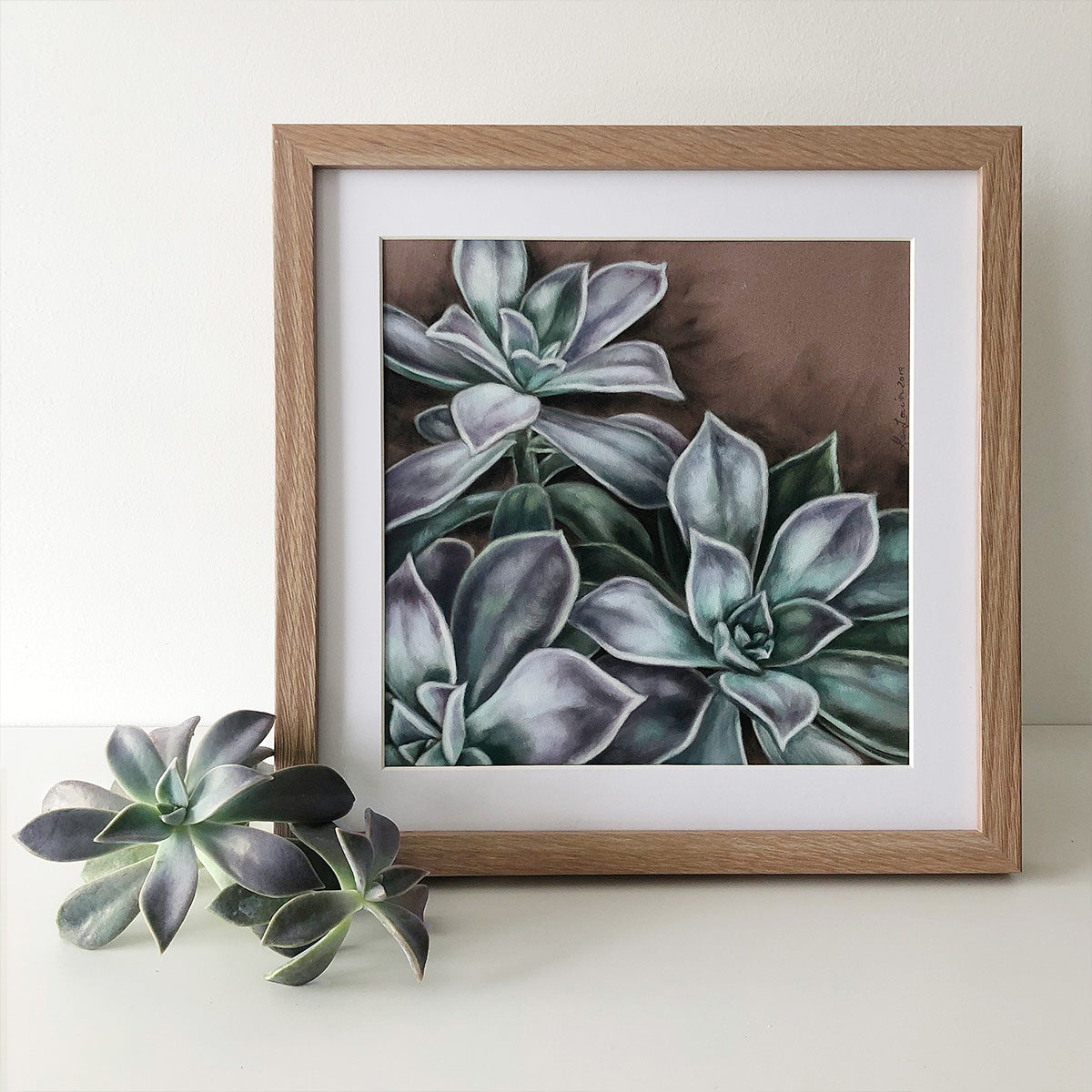 Succulent #1 - Limited Edition Print