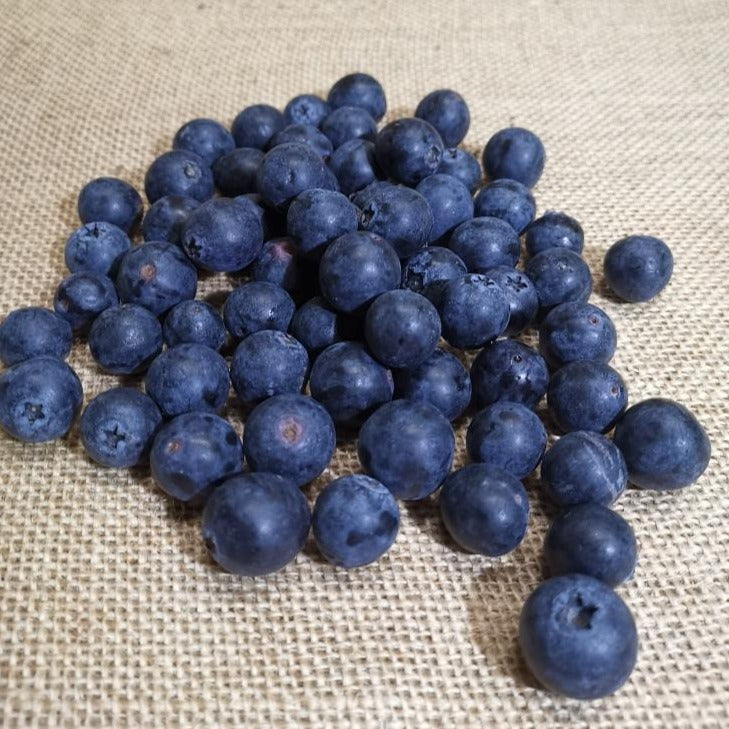 Load image into Gallery viewer, Blueberries