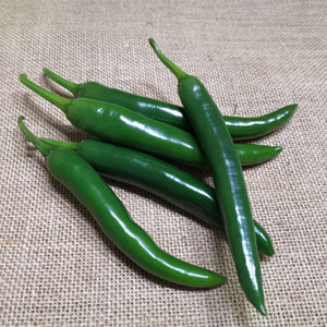 Chilli - Long Green